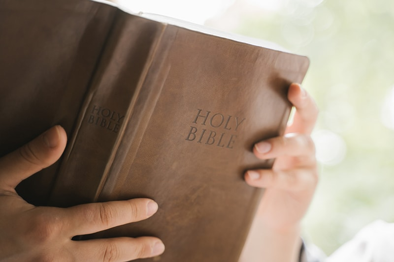 person holding bible and reading it